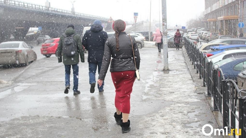 В ближайшие дни омичей ожидает дождливая и снежная погода