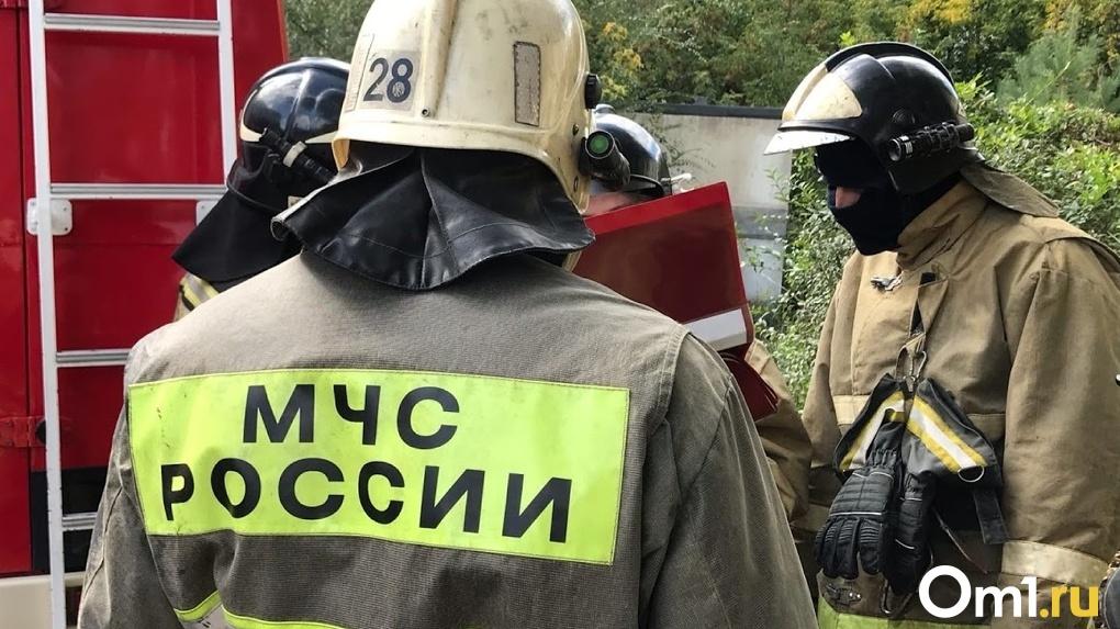 В Омске из охваченной пламенем многоэтажки спасли 12 человек
