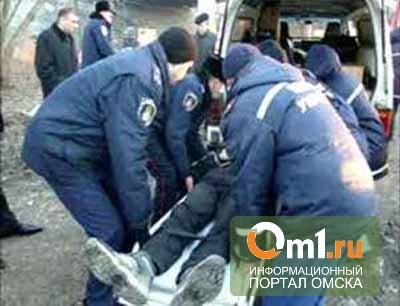 Полиция нашла родителей подростка, упавшего в Омске с Горбатого моста