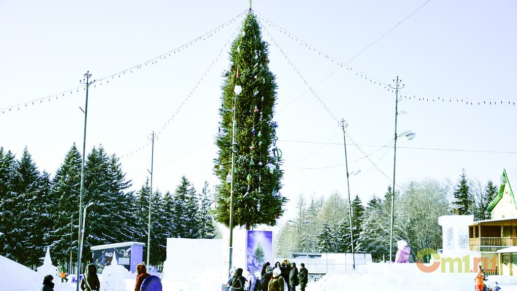 В Омске пройдет лыжная гонка на призы Деда Мороза