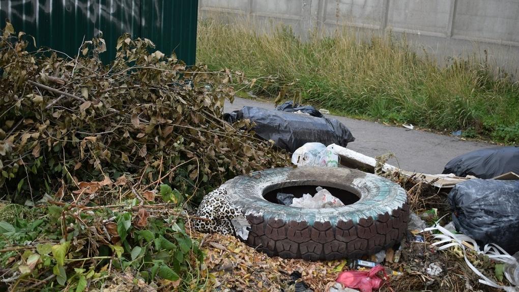Омские активисты ОНФ проверили состояние точек для сбора мусора частном секторе