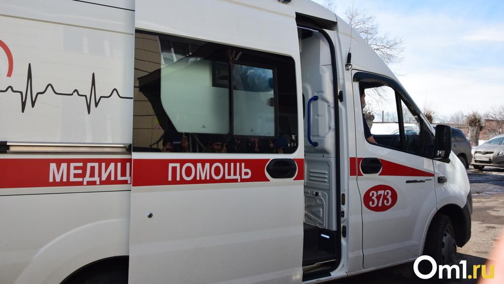 Годовалая девочка пострадала в столкновении с КамАЗом на омской трассе
