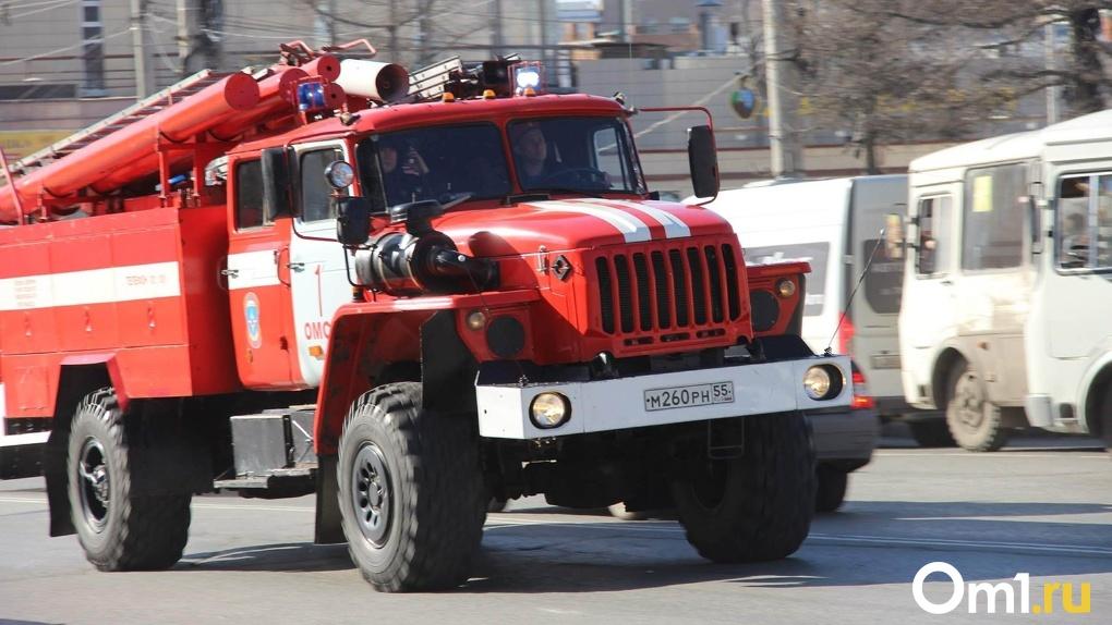 В Омске в пожаре едва не погибли 12 человек