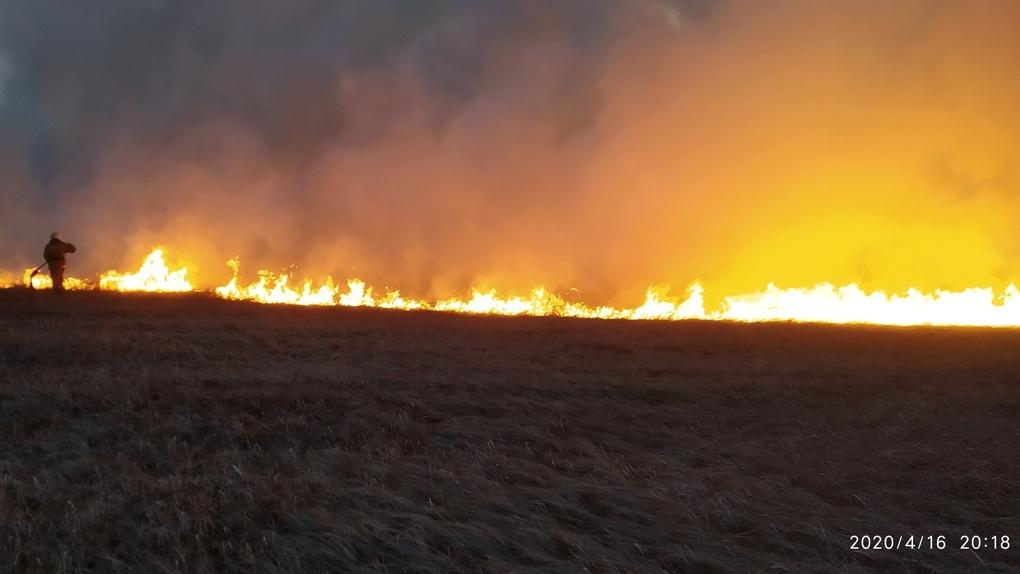 Возле Ясной Поляны в Омске сгорело 45 тысяч квадратных метров травы