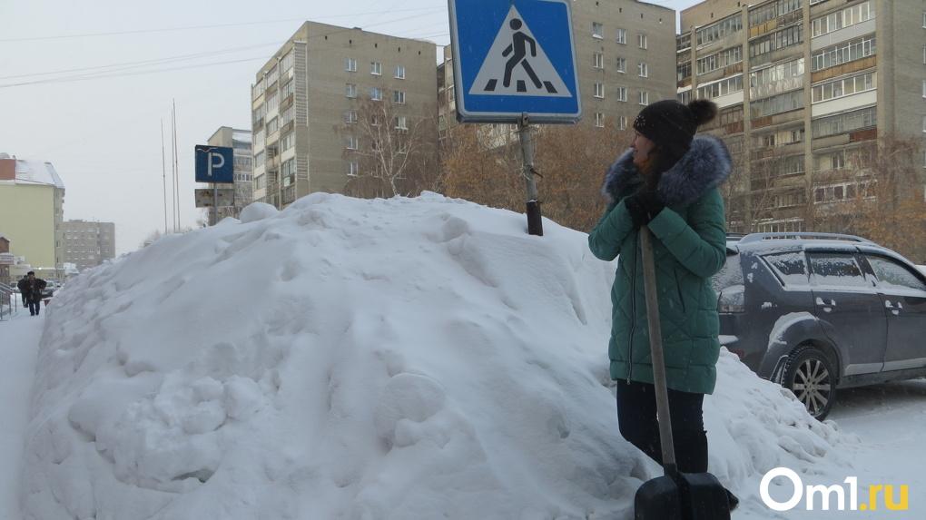 Мороз до -15 и снегопад: какая погода ждёт новосибирцев в ближайшие три дня?