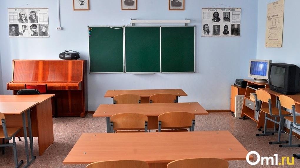 Названы примерные сроки возвращения новосибирских учеников в школы