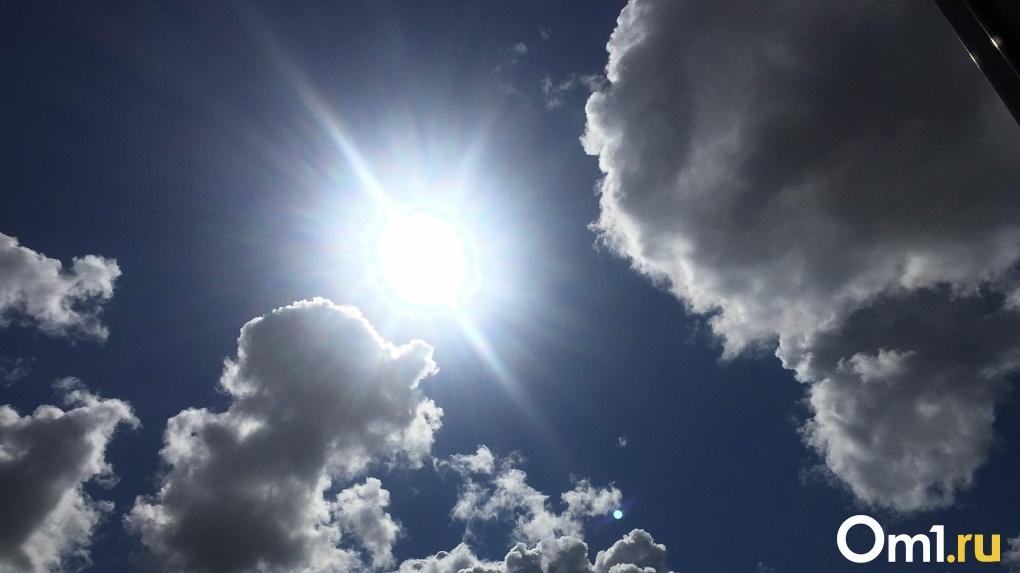 Аномальная жара замучает новосибирцев