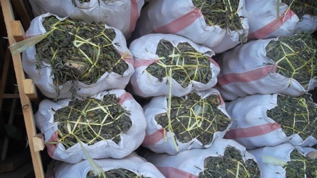 В Омск не пустили 20 тонн свежей картошки и капусты из-за хранения овощей на траве