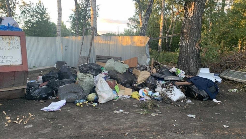 Названа причина мусорного коллапса в Новосибирске
