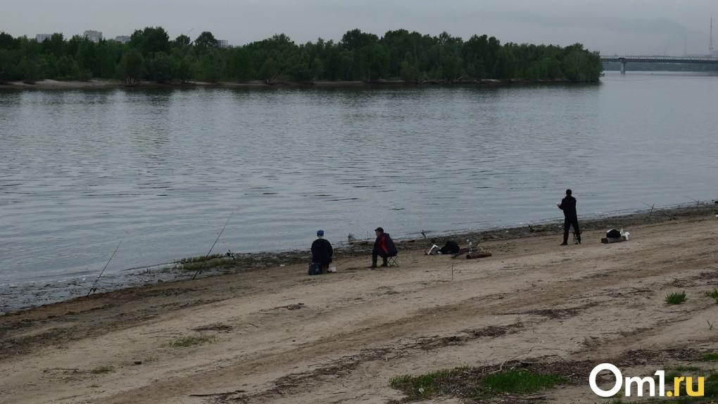 Омич похвастался пойманной в Иртыше 7-килограммовой рыбой