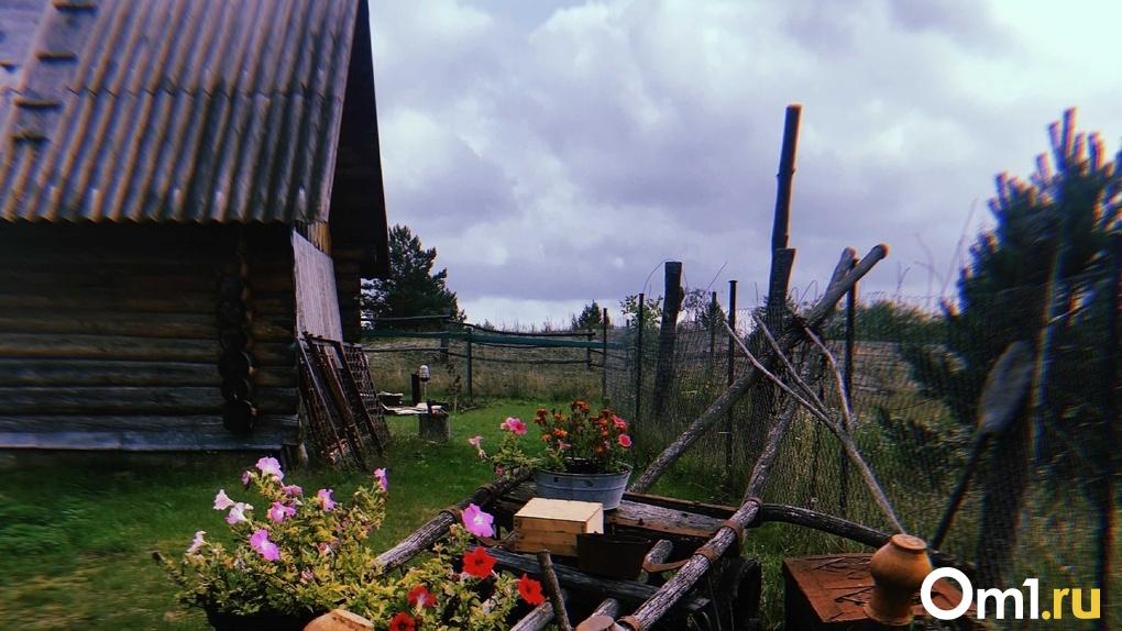 Во время самоизоляции омичи массово занимались огородом и строительством