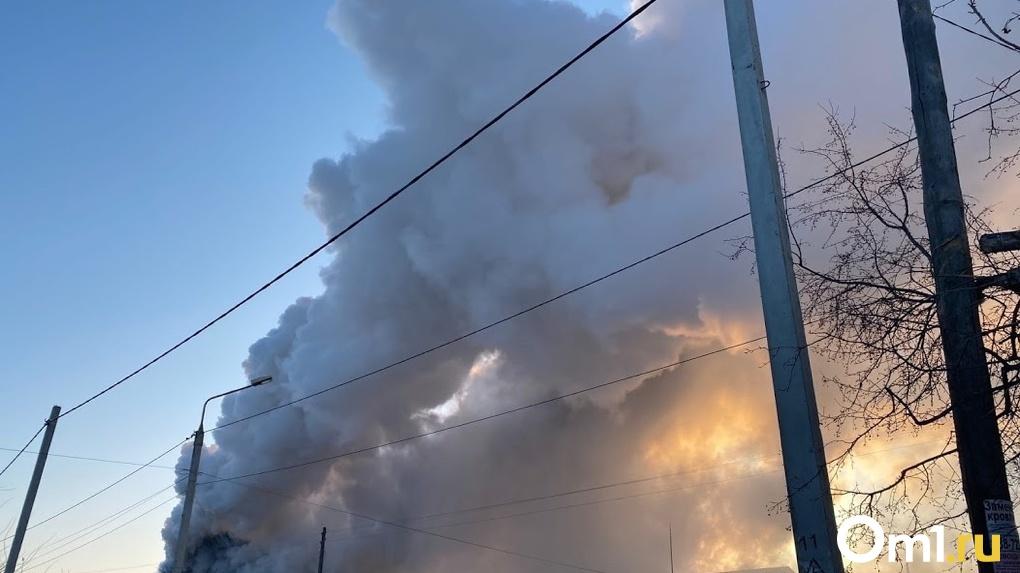 Омская область в огне. Ещё один крупный пожар произошёл неподалёку от Лузино. ФОТО