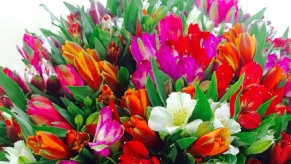 О самых необычных экзотических цветах