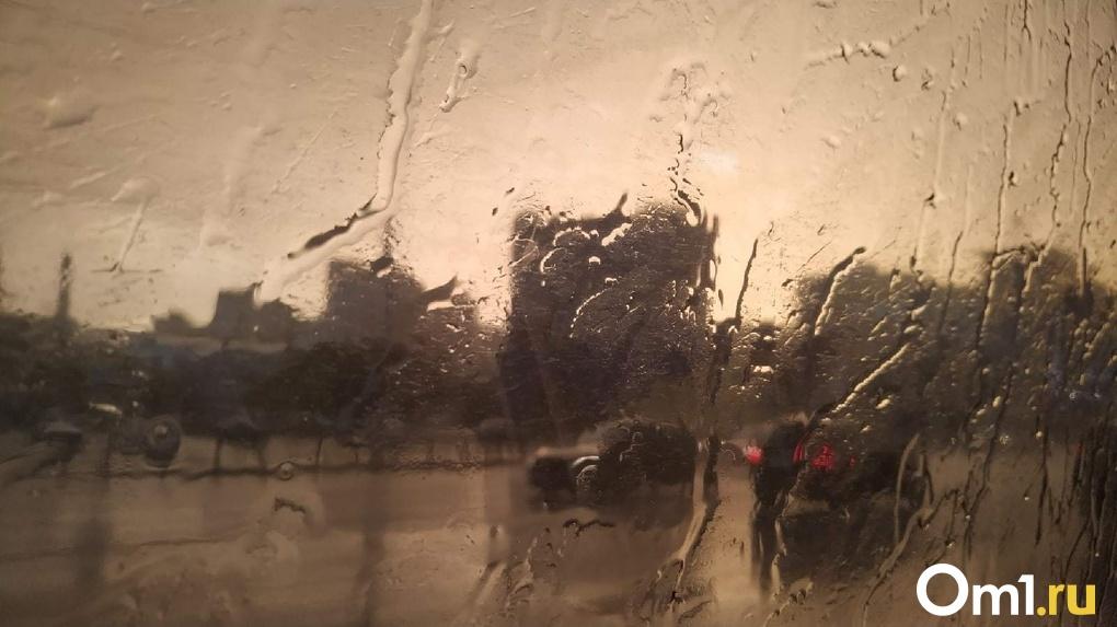 Доставайте дождевики. Стал известен прогноз погоды в Омске на День знаний