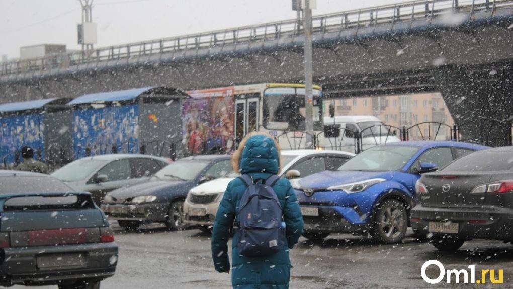 Под Омском хлопьями идёт обещанный синоптиками снег. Видео