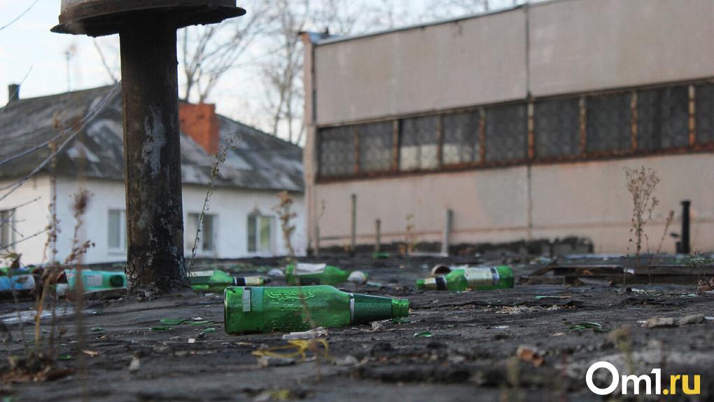 Задворки и пустыри: узнайте непубличные места Омска по фото (ТЕСТ)