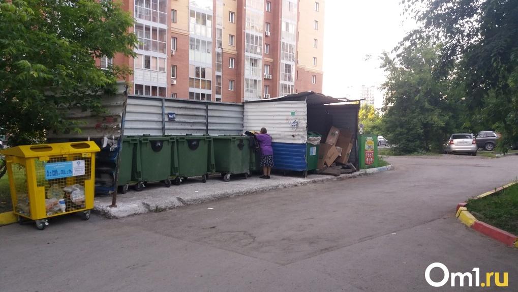 Министр ЖКХ Новосибирской области назвал условия строительства мусорного полигона под Бердском