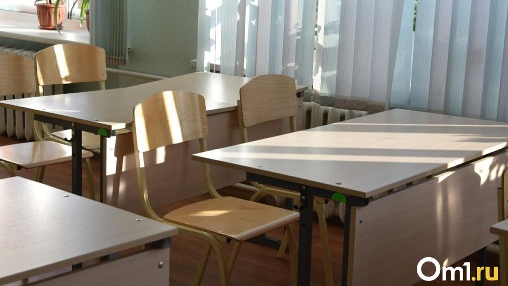 «Боже упаси!»: омский министр образования рассказала о дистанционном обучении в школах с 1 сентября