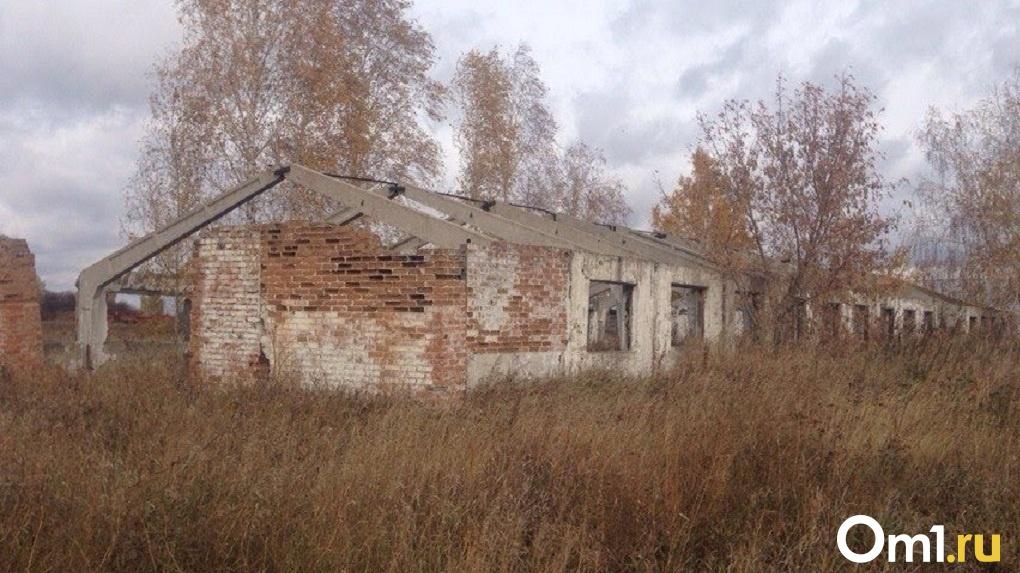 «Пустующие дома и школы с выбитыми стеклами». Архитекторы боятся будущего Омска