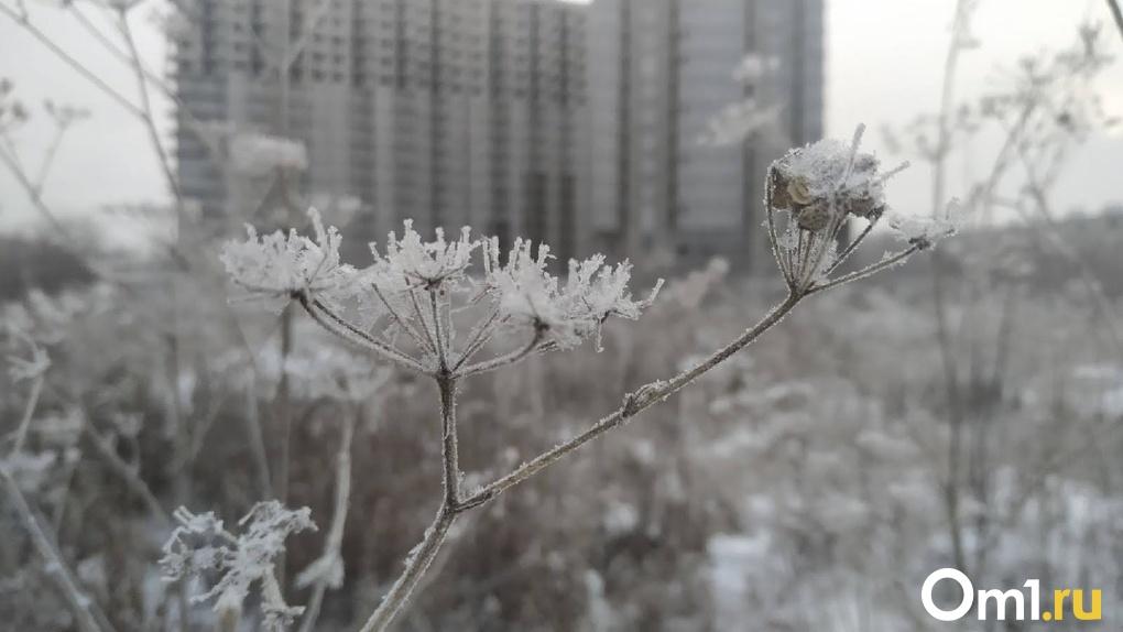 Омичей ожидают аномальные холода. Морозы продержатся до конца недели