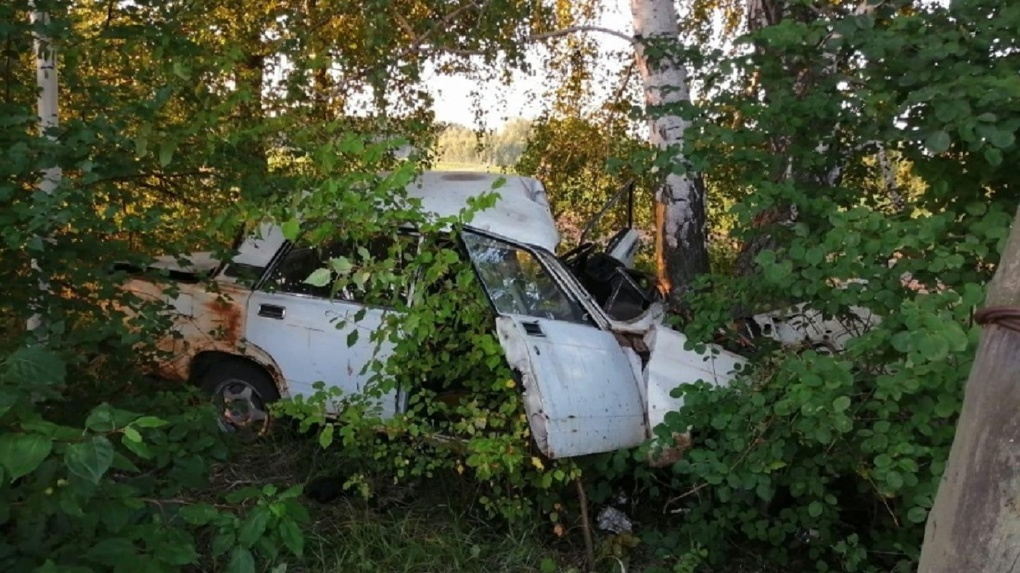 Ночью под Омском в ДТП погибла молодая девушка
