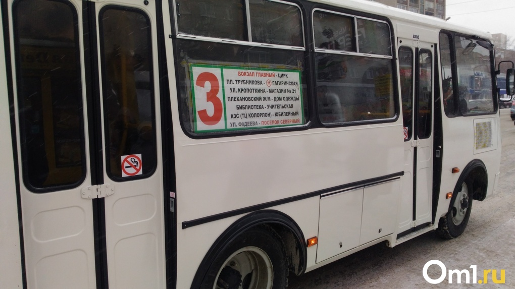 Новосибирские власти поддержат рублём перешедших на газ перевозчиков