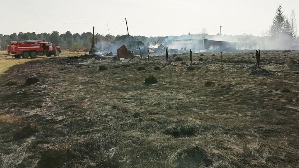 Крупный пожар уничтожил больницу, 70 построек и три дома под Новосибирском