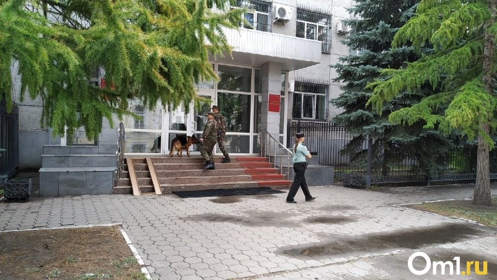 Омский риелтор 6 лет скрывалась от суда. Ее обвиняют в мошенничестве на десятки миллионов рублей