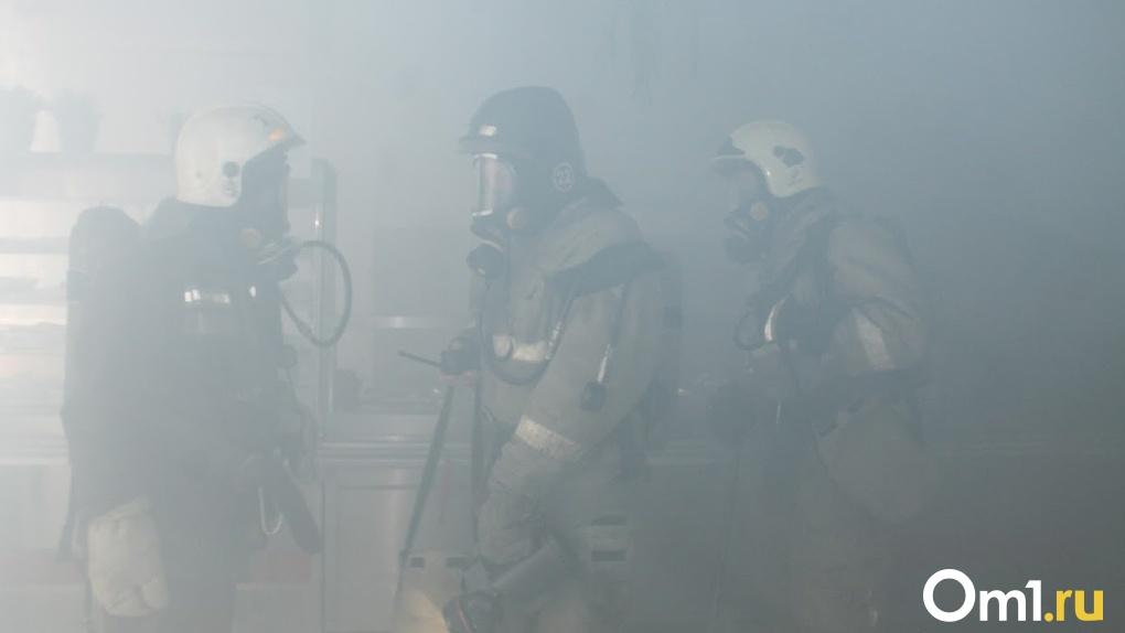 Во время протестов в Беларуси загорелся филиал омского завода, расположенный в Могилёве
