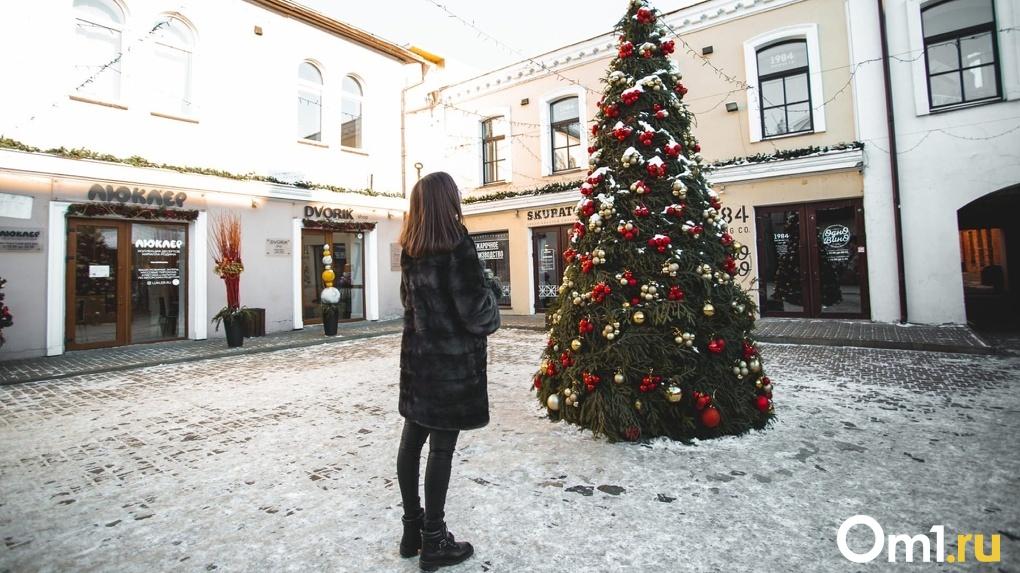 Как стать красивой с помощью продуктовой тележки и гирлянды? Идеи для новогодней фотосессии в Омске