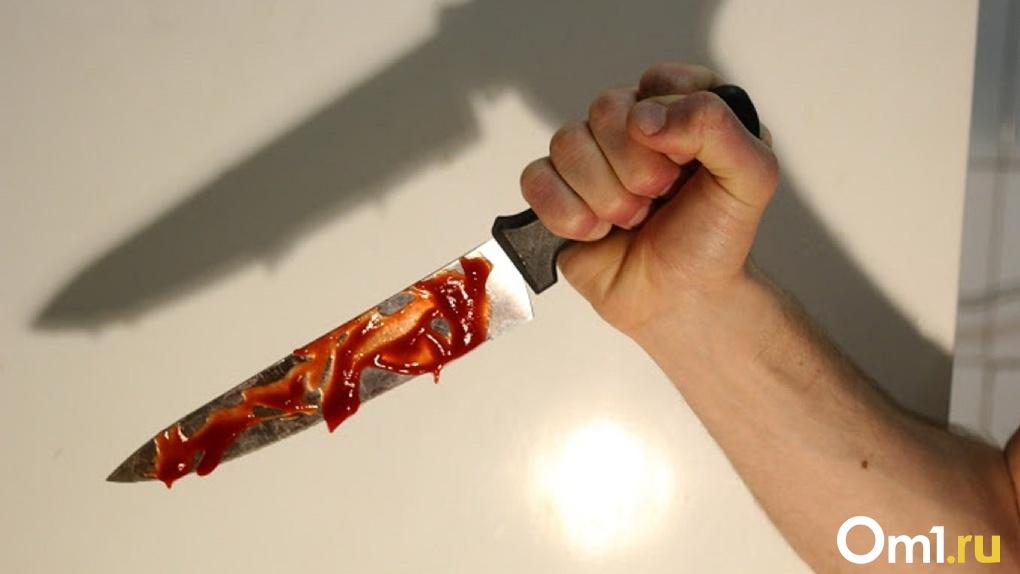 Омич воткнул нож в грудь соседа из-за колорадских жуков на его картошке