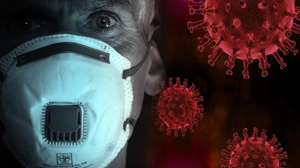 Новосибирские учёные знают, как «убить» коронавирус