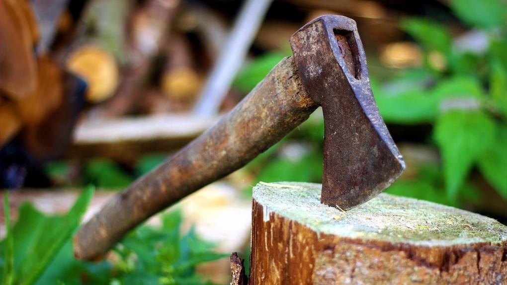 Новосибирец из ревности убил сожительницу топорищем, а труп закопал на участке