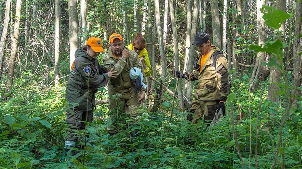 Грибы и ягоды манят: из-за дикоросов новосибирцы вдвое чаще стали теряться в лесу