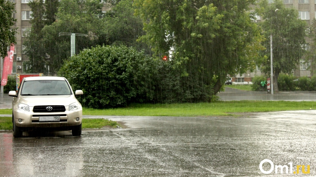 Новосибирцев ждёт дождливая неделя с грозами