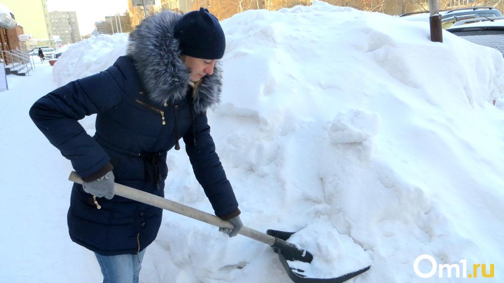Новосибирск снова завалит снегом в середине недели