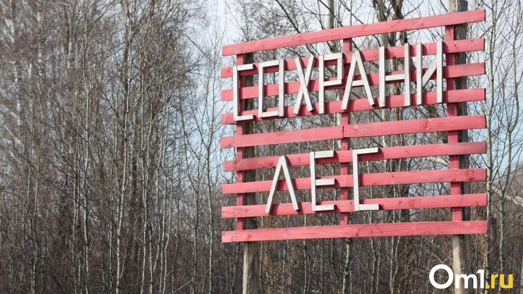 Под Омском вспыхивает трава и мусор – по 135 возгораний за сутки