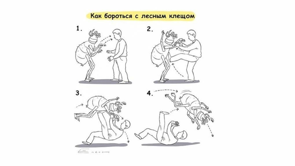 Омские власти сэкономили 70 тысяч на борьбе с клещами