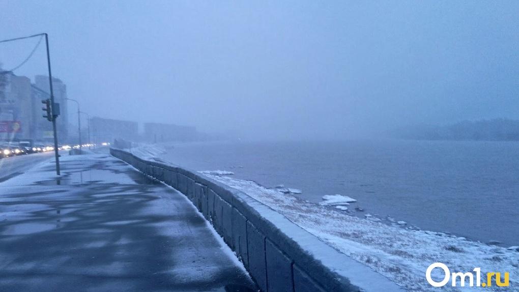Сильный ветер и дождь со снегом: в МЧС предупредили омичей о непогоде