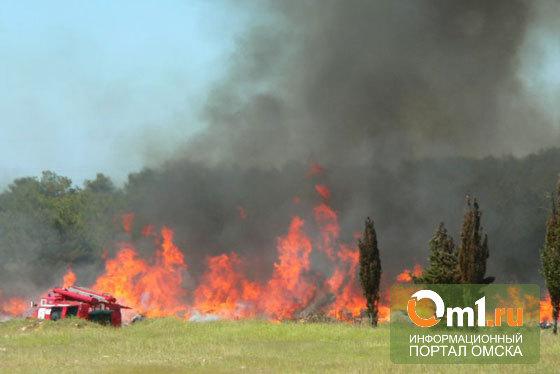 Омская область на один день стала пожароопасной