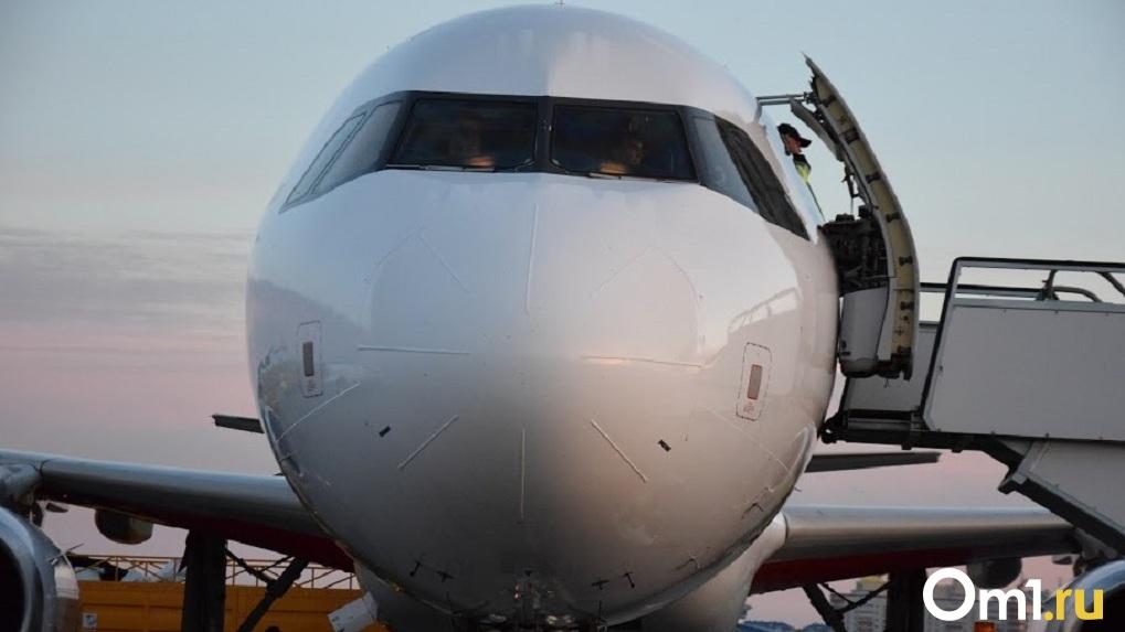 Прокуратура начала проверку из-за попадания птицы в турбину самолёта «Сочи — Новосибирск»