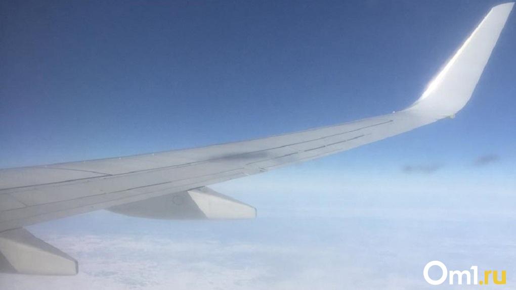 Новосибирская стюардесса рассказала о риске заражения пассажиров коронавирусом