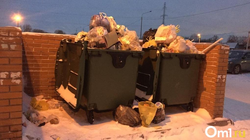 Новосибирцев спрашивают, довольны ли они «мусорной» реформой