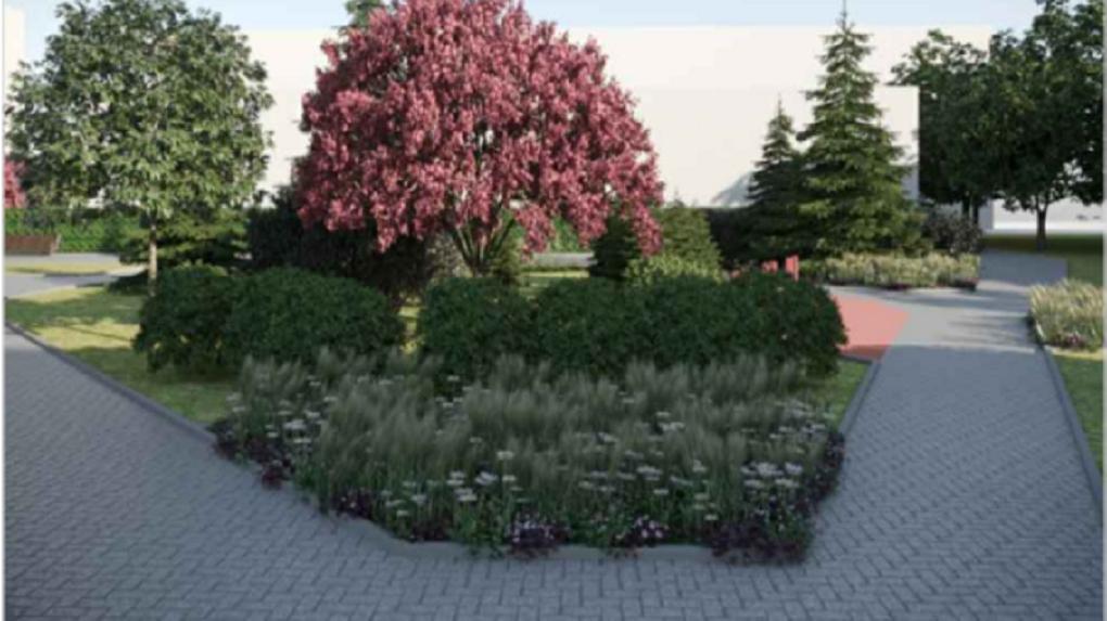 Сквер с редкими деревьями создадут в центре левобережья Новосибирска
