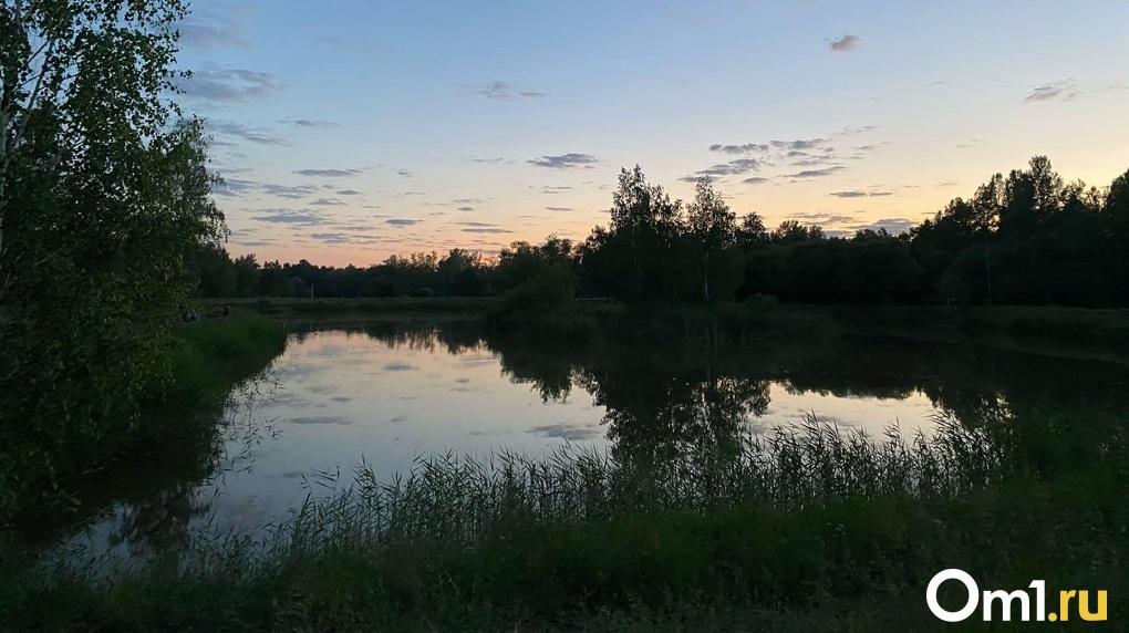 В Омской области на болоте обнаружили труп мужчины