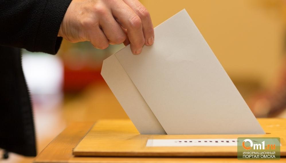 Омичи высказались за проведение первого в истории города референдума