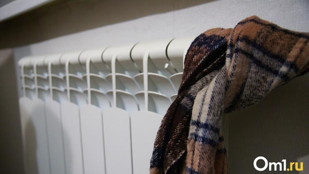 Для оставшихся без отопления жителей Омской области купят обогреватели на 2,5 миллиона