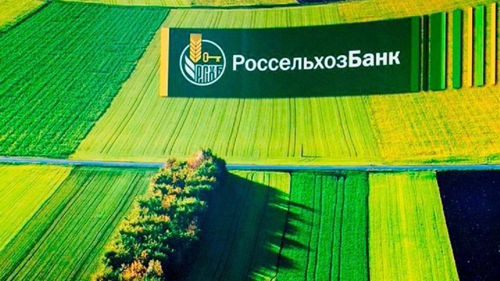 Омский филиал Россельхозбанка выдал первый льготный потребительский кредит для жителей села