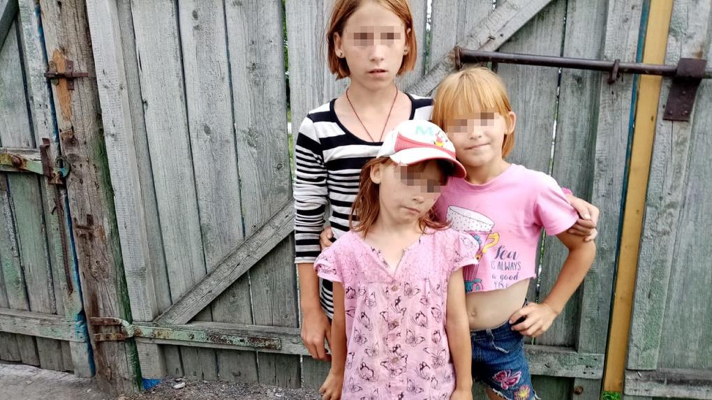 Три девочки в рабстве: в Новосибирской области затравили защитницу несчастных детей. ВИДЕО-ИСТОРИЯ