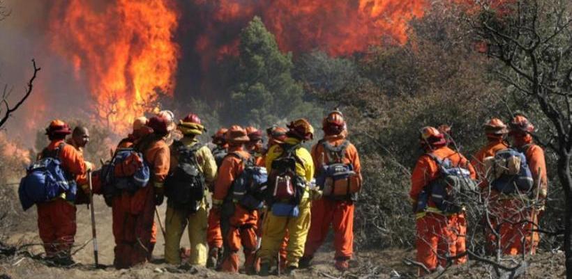 На первомайские праздники вокруг Омска вспыхнуло 12 лесных пожаров